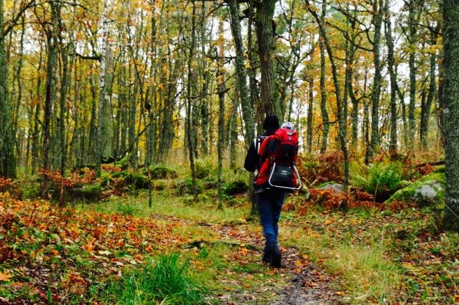 Kävellen metsässä